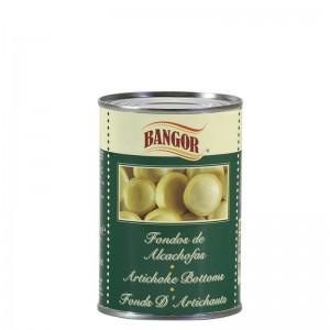 Fondos de Alcachofa lata 1/2 kg